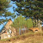 Derevenskij byt v ZHablyake. Nats. park Durmitor. CHernogoriya 150x150 - Жабляк (Жабљак/Žabljak). Нац. парк Дурмитор. Черногория