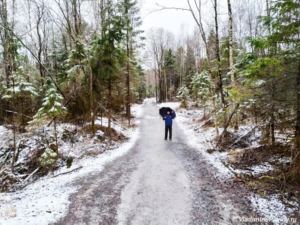 Doroga v parke Ruskeala. Svezhij sneg 8 maya - Прогулка по парку Реускеала в Карелии. Олень.