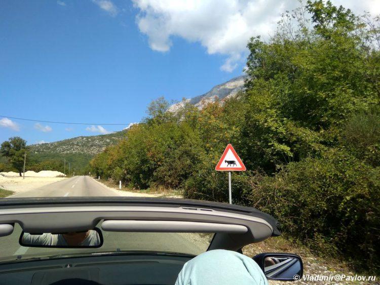 Edem po doroge k punktu perehoda iz CHernogorii v Bosniyu i Gertsegovinu 750x563 - TaxFree в Черногории. Заманчивое предложение