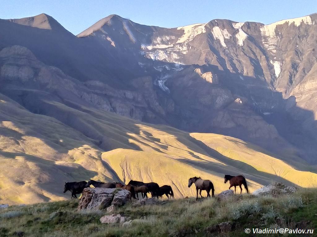 Gornyj Dagestan. Trek u podnozhiya Bazardyuzi - Горный Дагестан. Базардюзи, Ярыдаг, Шаблусдаг, Куруш