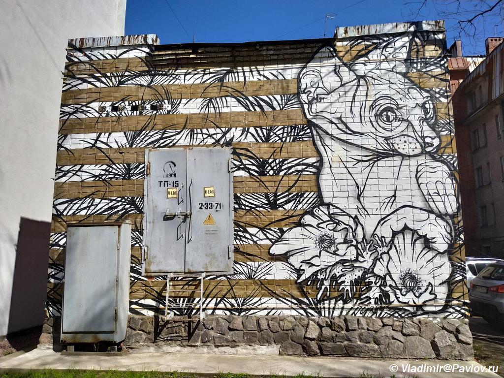 Graffiti s koshkoj. Vyborg. Dostoprimechatelnost - Старый Выборг. Экскурсия по городу