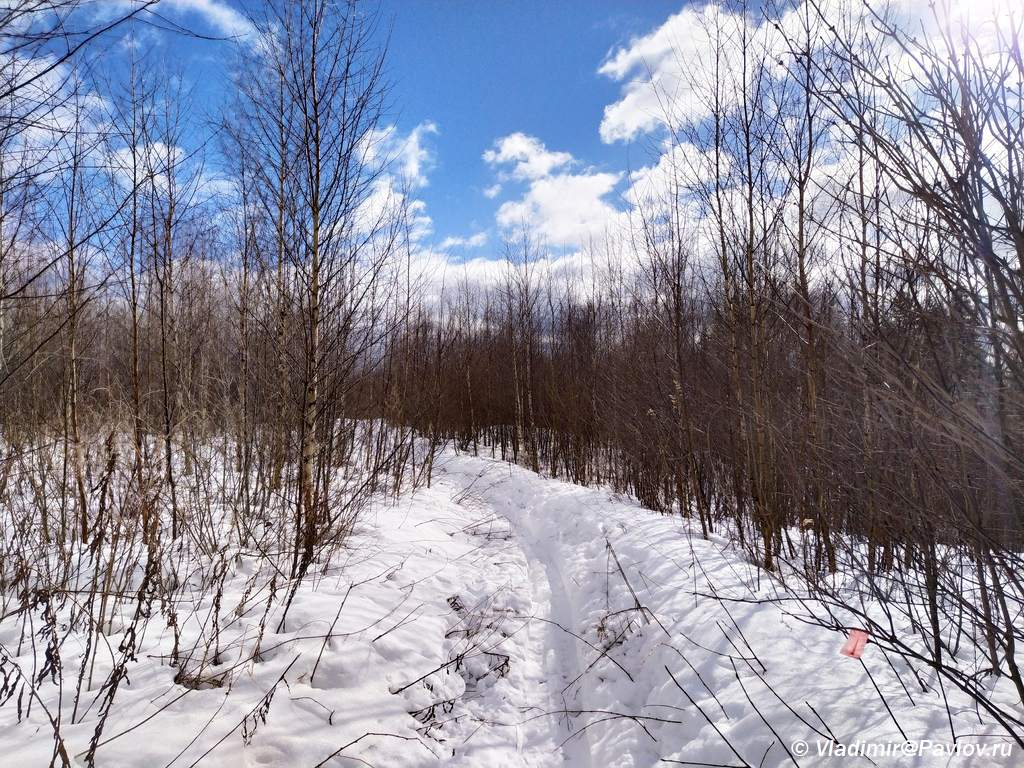 Lyzhnya po svezhemu snegu. Pohod vyhodnogo dnya - Поход выходного дня (ПВД) по Подмосковью на лыжах