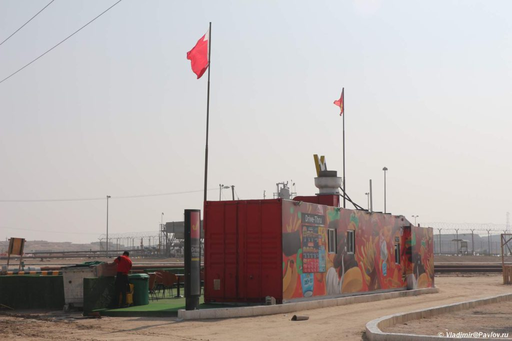 Mak Drajv v pustyne u Dreva ZHizni. Bahrejn. Tree Of Life. Bahrain 1024x683 - Древо Жизни в пустыне Бахрейна. Tree Of Life