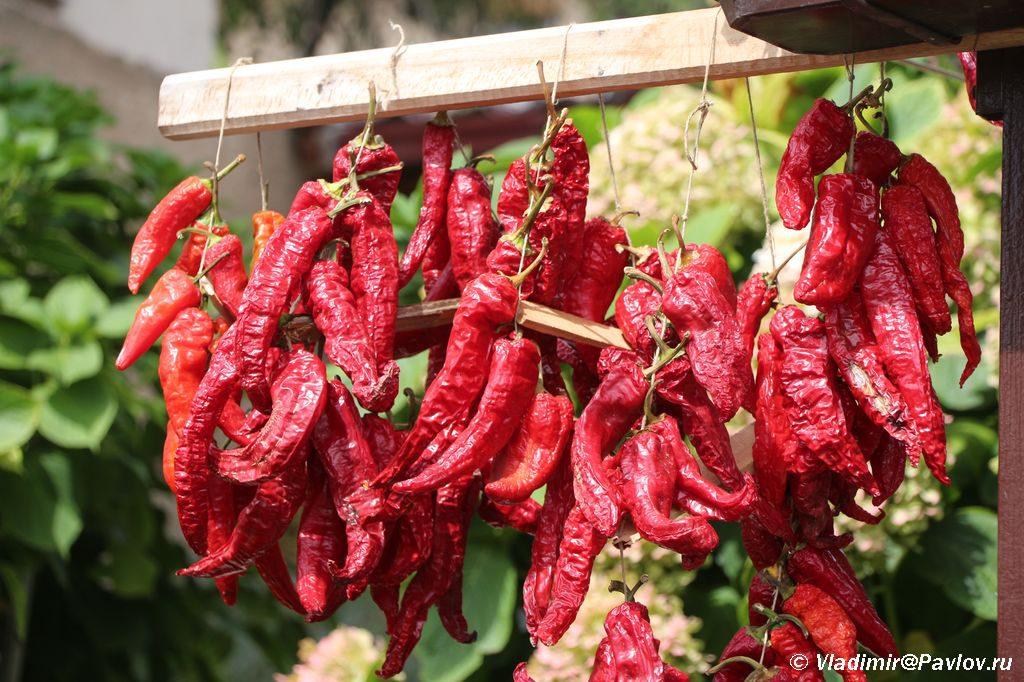 Makedonskij krasnyj perets 1024x682 - Охрид. Вступление Македонии в ЕС. Цены на рынке. Национальные блюда.