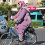Po Albanii na velosipede 150x150 - Албания. Шкодер (Shkodër, Shkodra, Скадар).