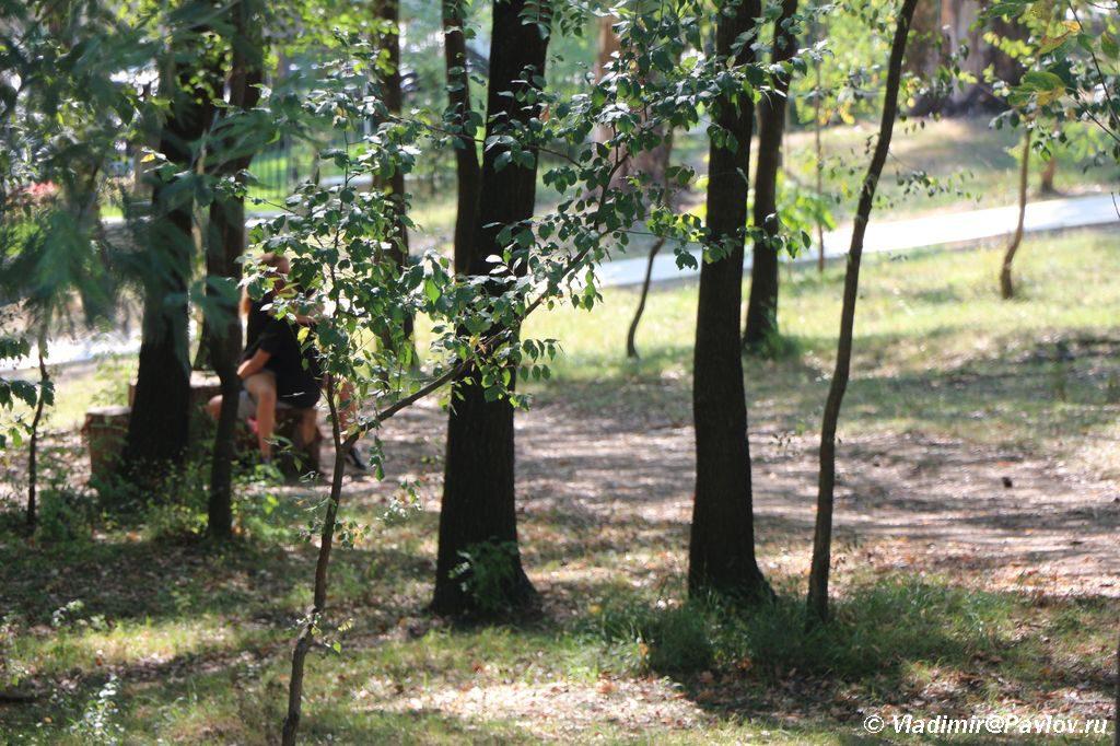 Seks v Albanii. Gorodskoj park Tirany 1024x682 - Тирана. Черная Ауди. Достопримечательности.