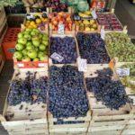 TSeny na produkty i frukty v Prishtine. Kosovo. Kosovo. Pristina 150x150 - Продукты, покупки, еда в Приштине. Косово