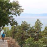 Tropa vdol ozera Ohrid projdya po kotoroj ya zasnul 150x150 - Старый город Охрида. Экотропа. Сила Охридского озера.