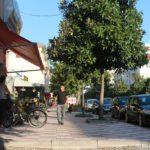 Ulitsa v SHkodere. Albaniya 150x150 - Албания. Шкодер (Shkodër, Shkodra, Скадар).