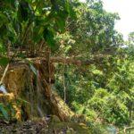 Vershina vodopada Phu Si Phu Si waterfall. Laos. Dostoprimechatelnosti Luang Prabang. Laos Luang Prabang 150x150 - Окрестности Луанг Прабанг. Пещера Пхалуеси (Phaluesi Cave). Водопад Пху Си (Phu Si Waterfall)