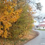Vid na TSerkov Klimenta Papy Rimskogo byvshego Klimentskogo monastyrya 150x150 - Мирожский монастырь в Пскове